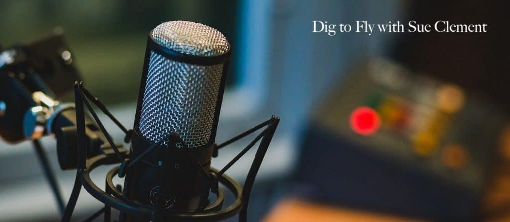 Dig to Fly Podcast with Sue Clement
